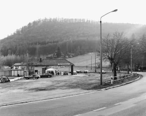 Netzkater/Harz
